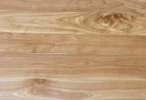 カバザクラ材の木目 散孔材