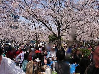 先週の日曜日は、大阪の桜ノ宮公園でお花見街コンをお手伝いに行ってまいりました。