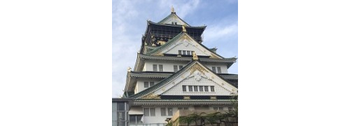 【50・60代メイン】大阪城を巡る♡おさんぽコン